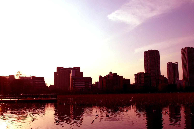 上野・不忍池イメージ1